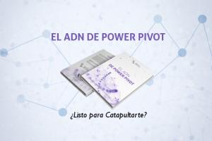 El ADN de Power Pivot   Libro Electrónico